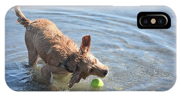Splashing Yarmouth Toller Reaching For The Tennis Ball In Water IPhone Case