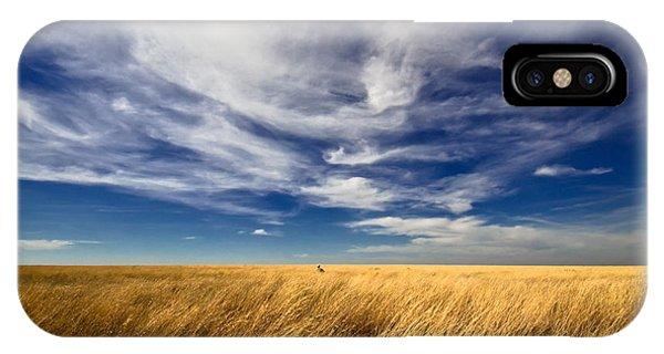 Splendid Isolation IPhone Case