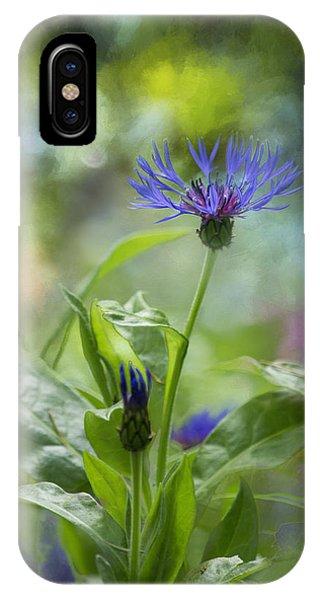 Splendor In The Garden IPhone Case