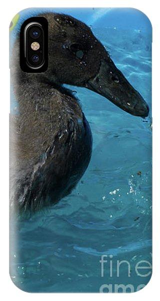 Splish Splash I'm Taking A Bath IPhone Case