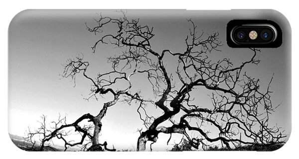 Split Single Tree On Hillside - Black And White IPhone Case