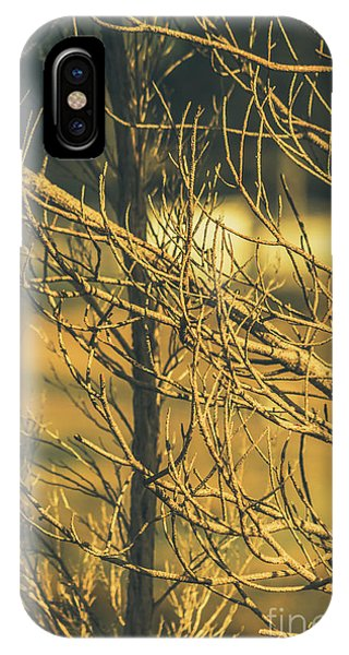 Sinister iPhone Case - Spooky Country House Obscured By Vegetation  by Jorgo Photography - Wall Art Gallery
