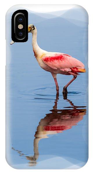 Spoonbill 3 IPhone Case
