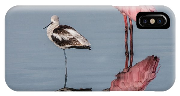 Spoonbill, American Avocet, And Reflection IPhone Case