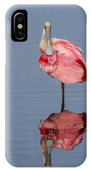 Spoonbill And Reflection IPhone Case