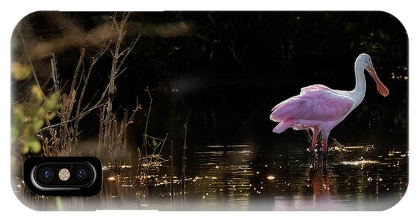 Spoonbill Fishing For Supper IPhone Case