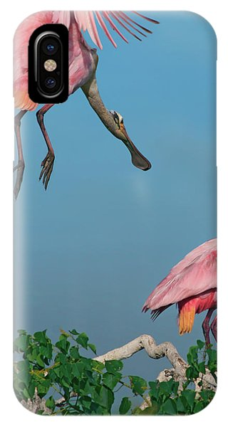 Spoonbills Greeting IPhone Case