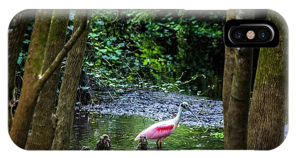 Egrets iPhone Case - Spooning by Marvin Spates