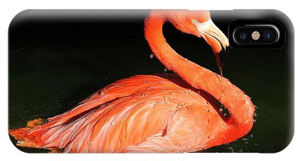 Spotlight On A Bathing Flamingo IPhone Case