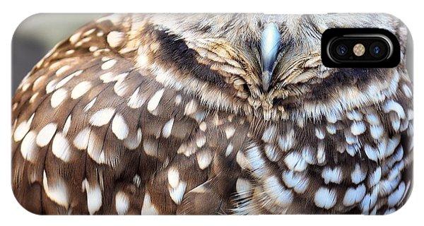 Spots - Burrowing Owl IPhone Case