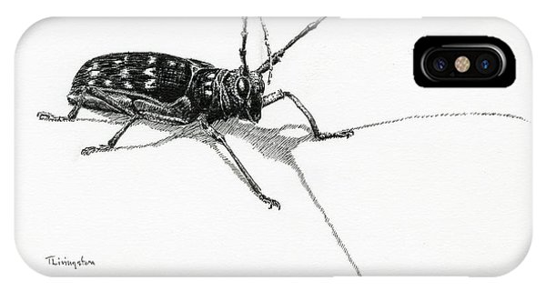 Spotted Pine Sawyer IPhone Case