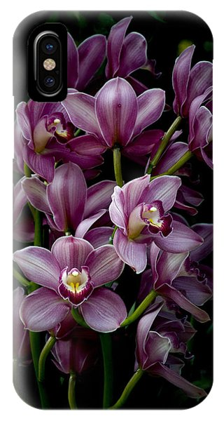 Spray Of Cymbidium Orchids IPhone Case