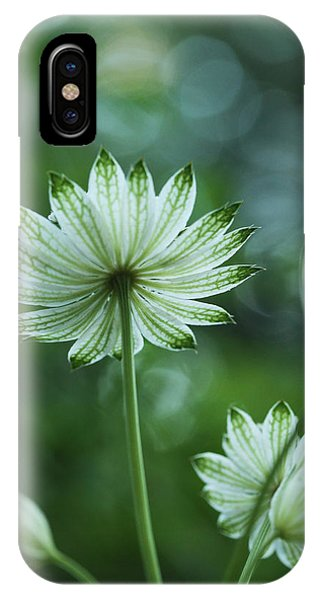 Botanica .. Spray Of Light IPhone Case