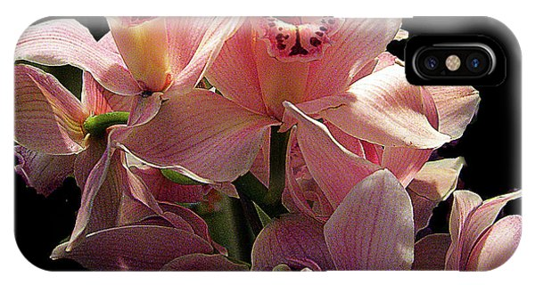 Spray Of Pink Orchids IPhone Case