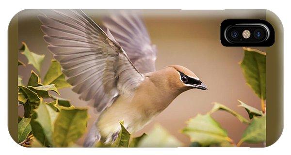 Cedar Waxing iPhone Case - Spread Your Wings Cedar Waxwing  by Terry DeLuco