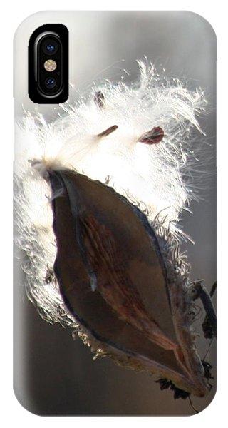 Spreading Seeds IIi IPhone Case