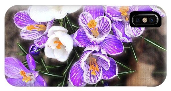 Spring Beauties IPhone Case