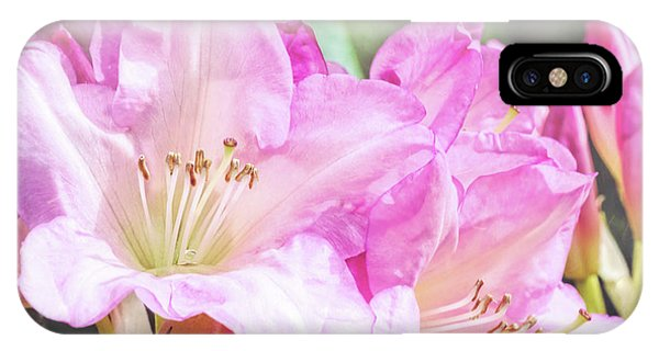 Spring Bling IPhone Case