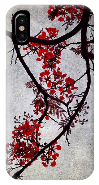 Spring Bloosom In Maldives. Flamboyant Tree II. Japanese Style IPhone Case
