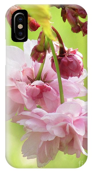 Spring Blossoms 8 IPhone Case