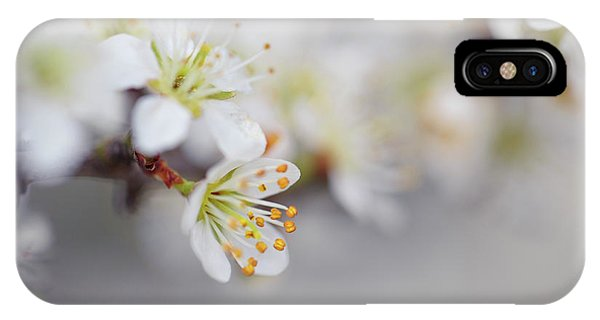 Growth iPhone Case - Spring Blossoms by Nailia Schwarz