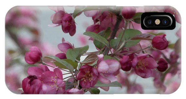 IPhone Case featuring the photograph Spring Blossoms by PJ Boylan