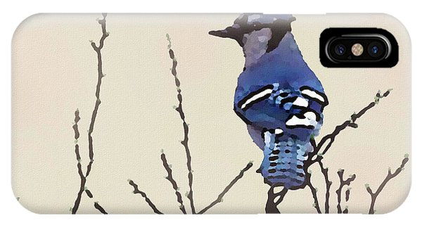 Spring Bluejay IPhone Case