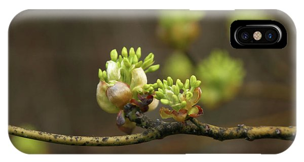 Spring Buds 9365 H_2 IPhone Case