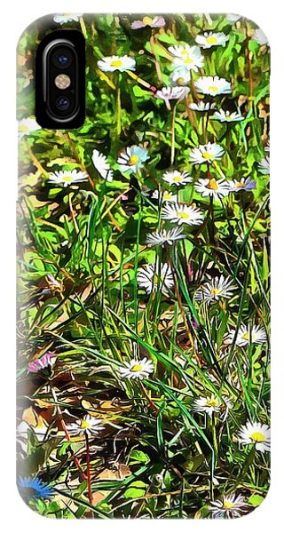 Spring Daisy Trails IPhone Case