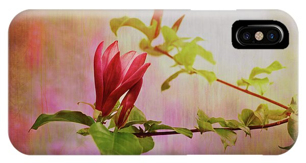 Spring Flare IPhone Case