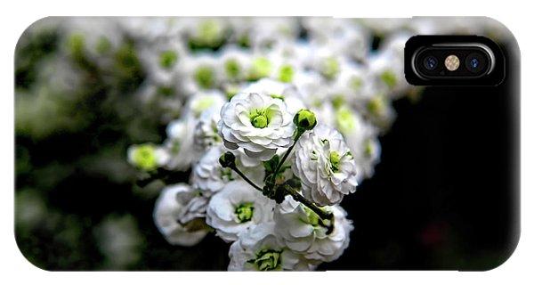 Spring Flowering Tree IPhone Case
