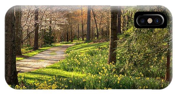 Spring Garden Path IPhone Case