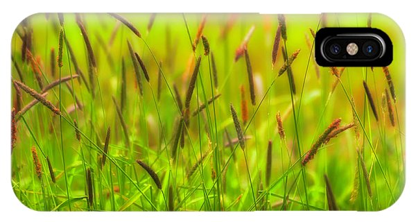 Spring Grasses IPhone Case