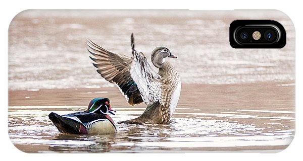 Wood Ducks iPhone Case - Spring Jubilation by Everet Regal