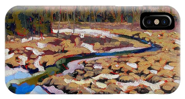 Spring Marsh Algonquin IPhone Case