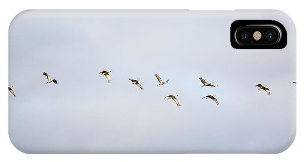 Spring Migration 2 IPhone Case