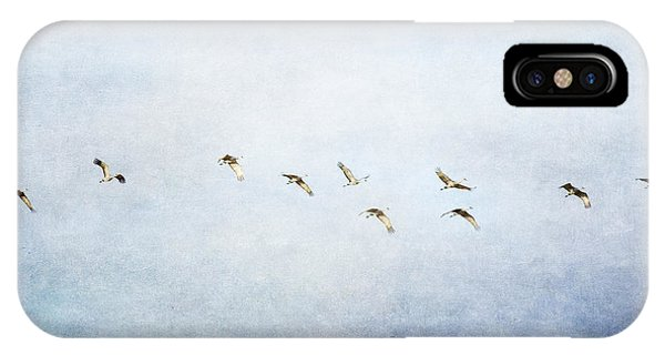 Spring Migration 2 - Textured IPhone Case