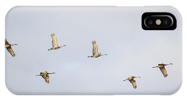 Spring Migration 3 IPhone Case