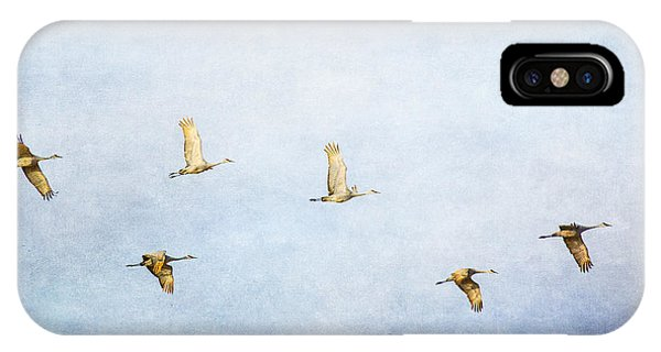 Spring Migration 3 - Textured IPhone Case