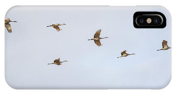 Spring Migration 4 IPhone Case