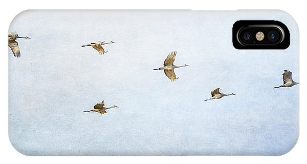 Spring Migration 4 - Textured IPhone Case