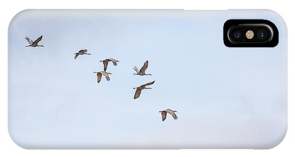 Spring Migration IPhone Case