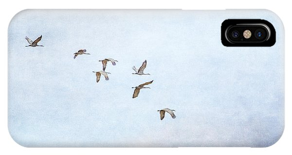 Spring Migration - Textured IPhone Case
