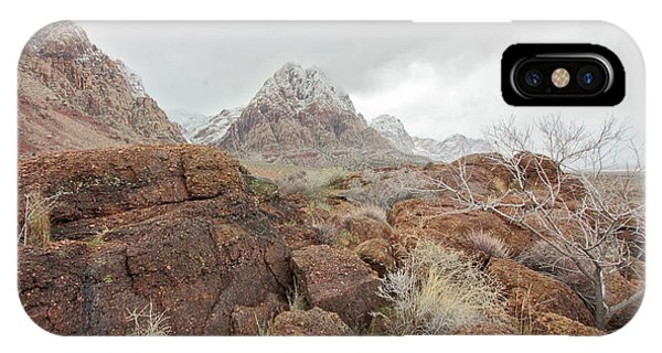 Spring Mountain Ranch IPhone Case