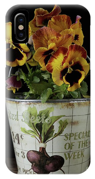 Alive iPhone Case - Spring Pansy Flowers In A Pail by Edward Fielding