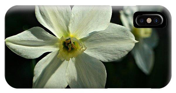 Spring Perennial IPhone Case