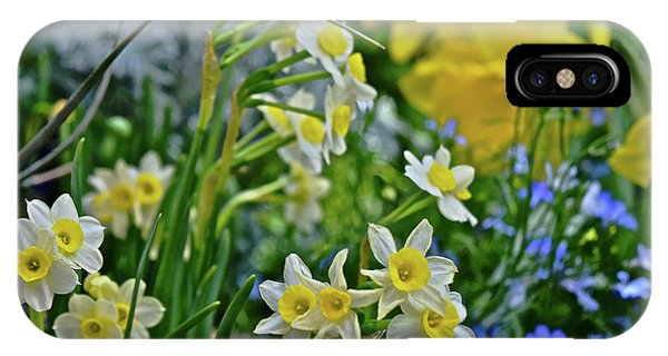 IPhone Case featuring the photograph Spring Show 18 A Sea Of Daffodils by Janis Nussbaum Senungetuk