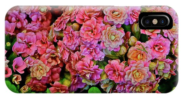 IPhone Case featuring the photograph Spring Show 18 Double Pink Kalanchoe by Janis Nussbaum Senungetuk