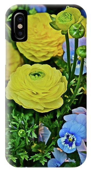 Spring Show 18 Persian Buttercup With Horned Viola IPhone Case