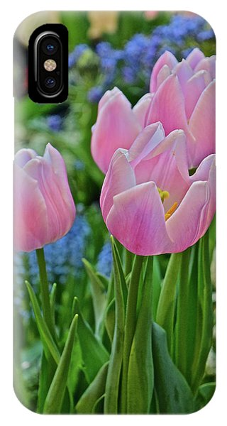 IPhone Case featuring the photograph Spring Show 18 Pink Tulip Welcome by Janis Nussbaum Senungetuk